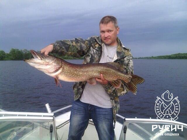 Ловать река рыбалка