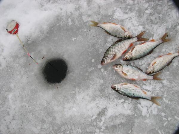 зимние костюмы для рыбалки екатеринбург